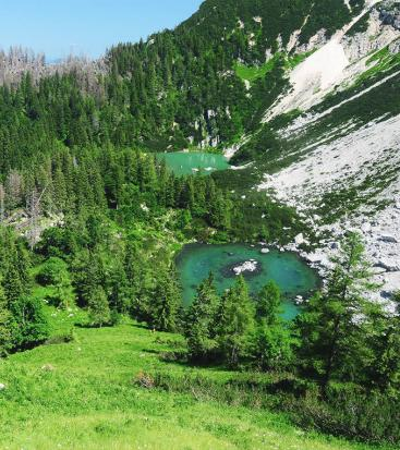 A lake in the mountains and many trees and meadow