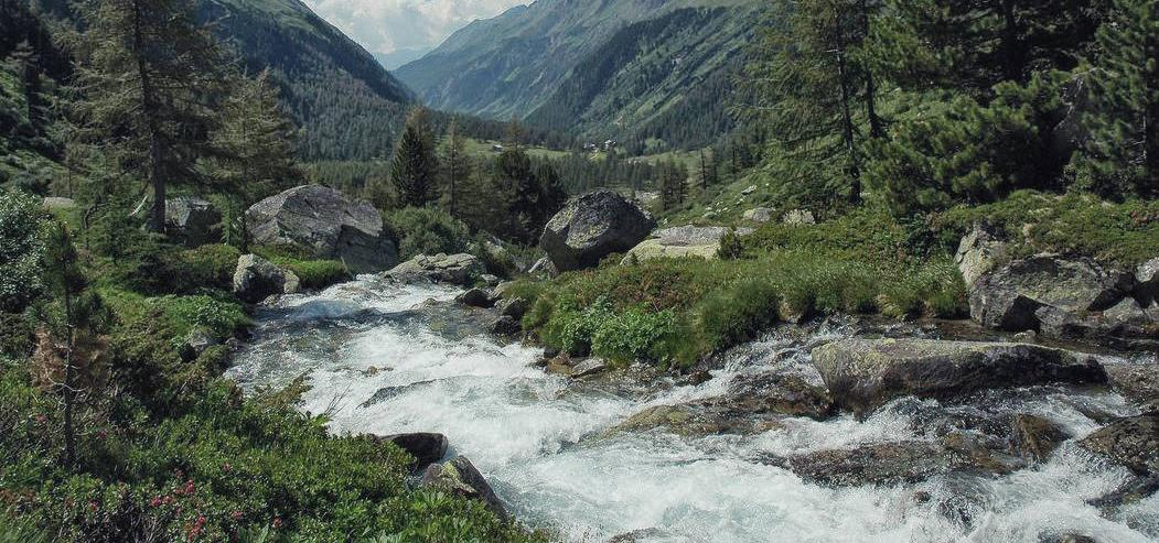 A brook in the mountains